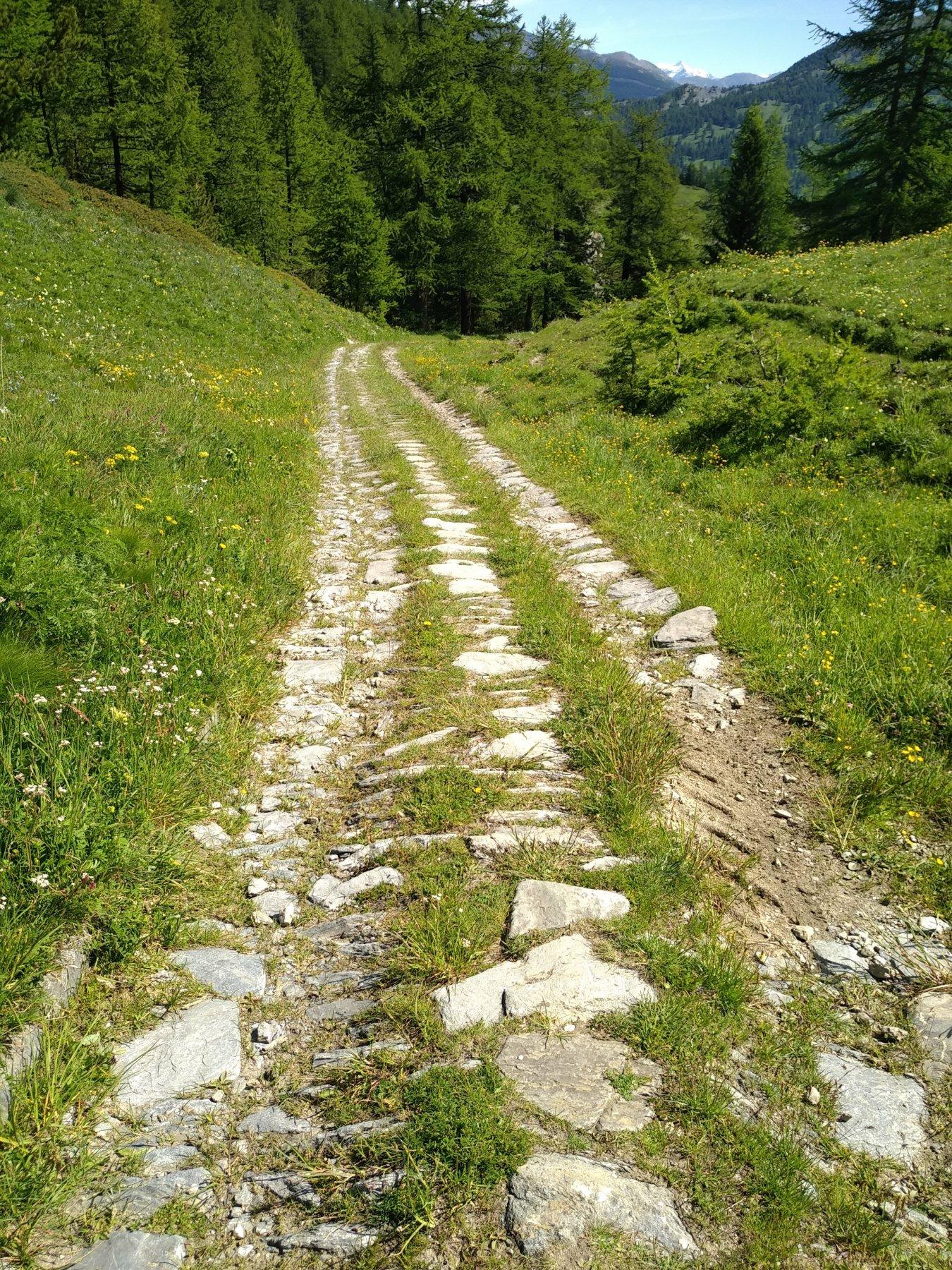 la strada salendo verso col Chabaud