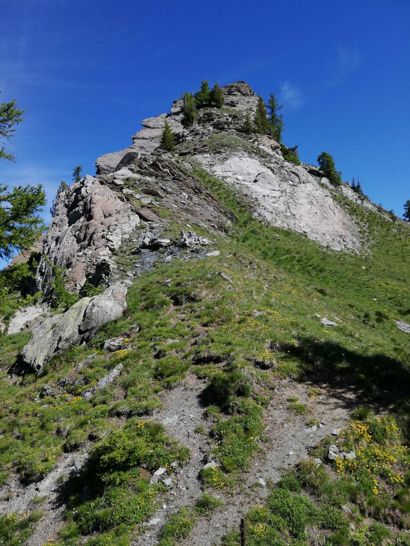 Il Mte Rognone dal Colle Mulinas