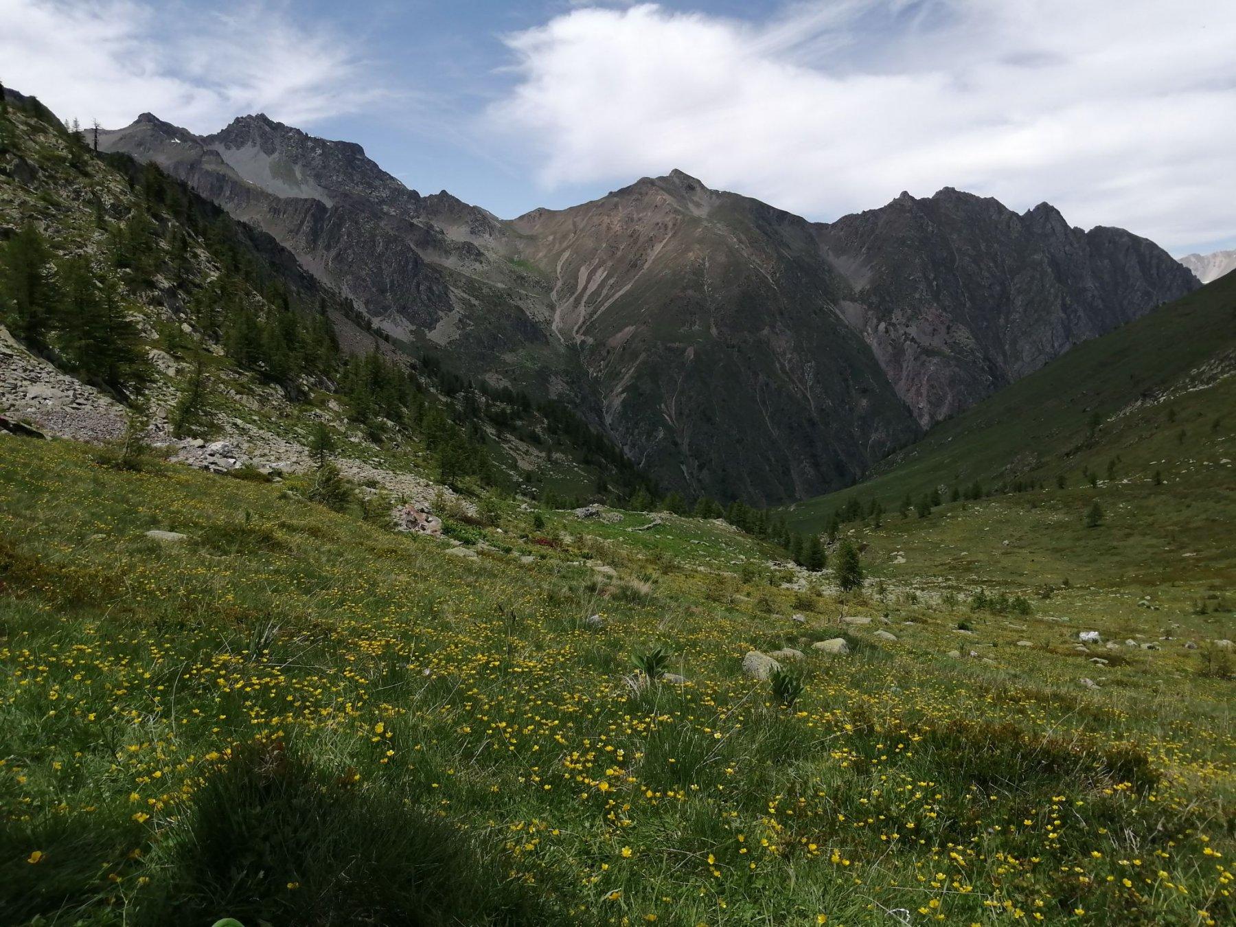 Gran panorama verso Stau
