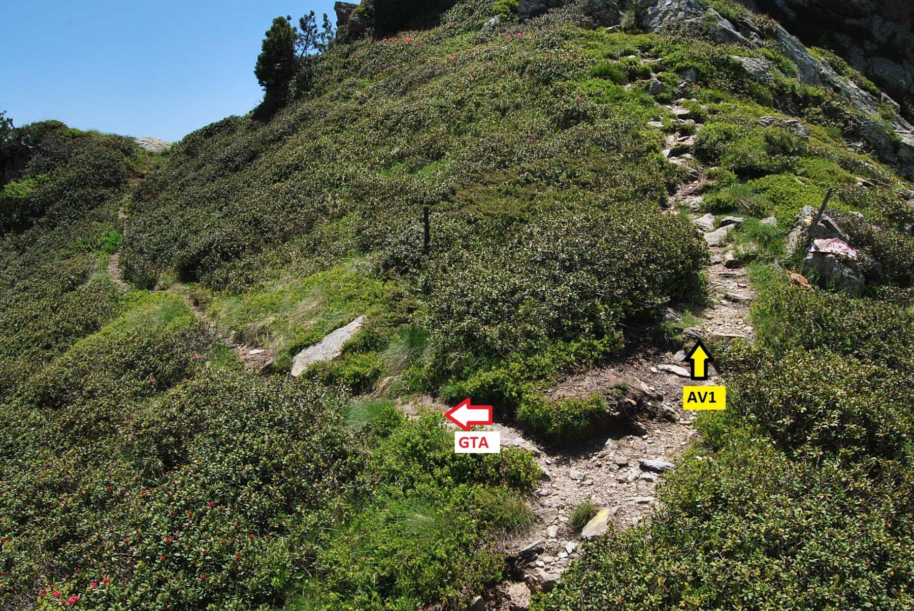 Il bivio di separazione, dopo il Col di Carisey e non indicato, tra GTA e AV1