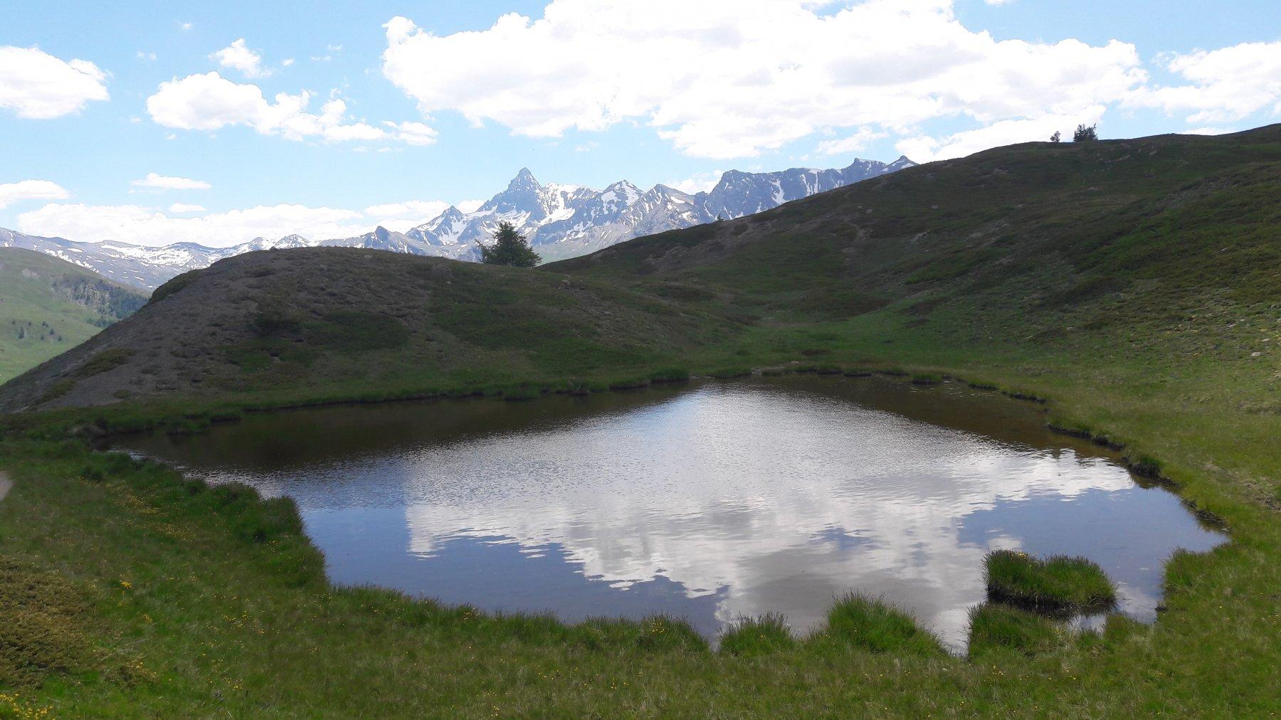 Lago Saurel