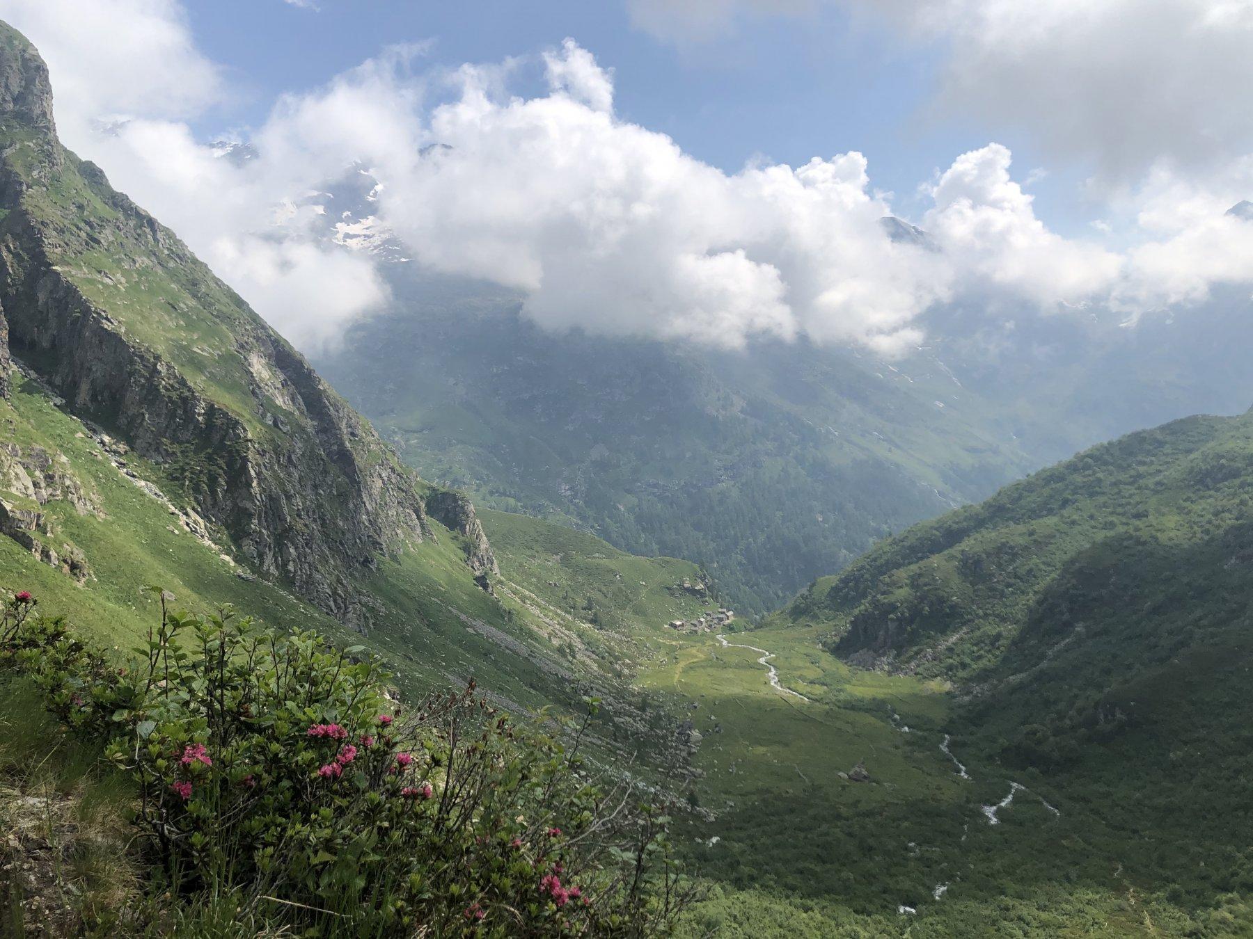 Alpe di Borsa dal sentiero verso la Bocchetta