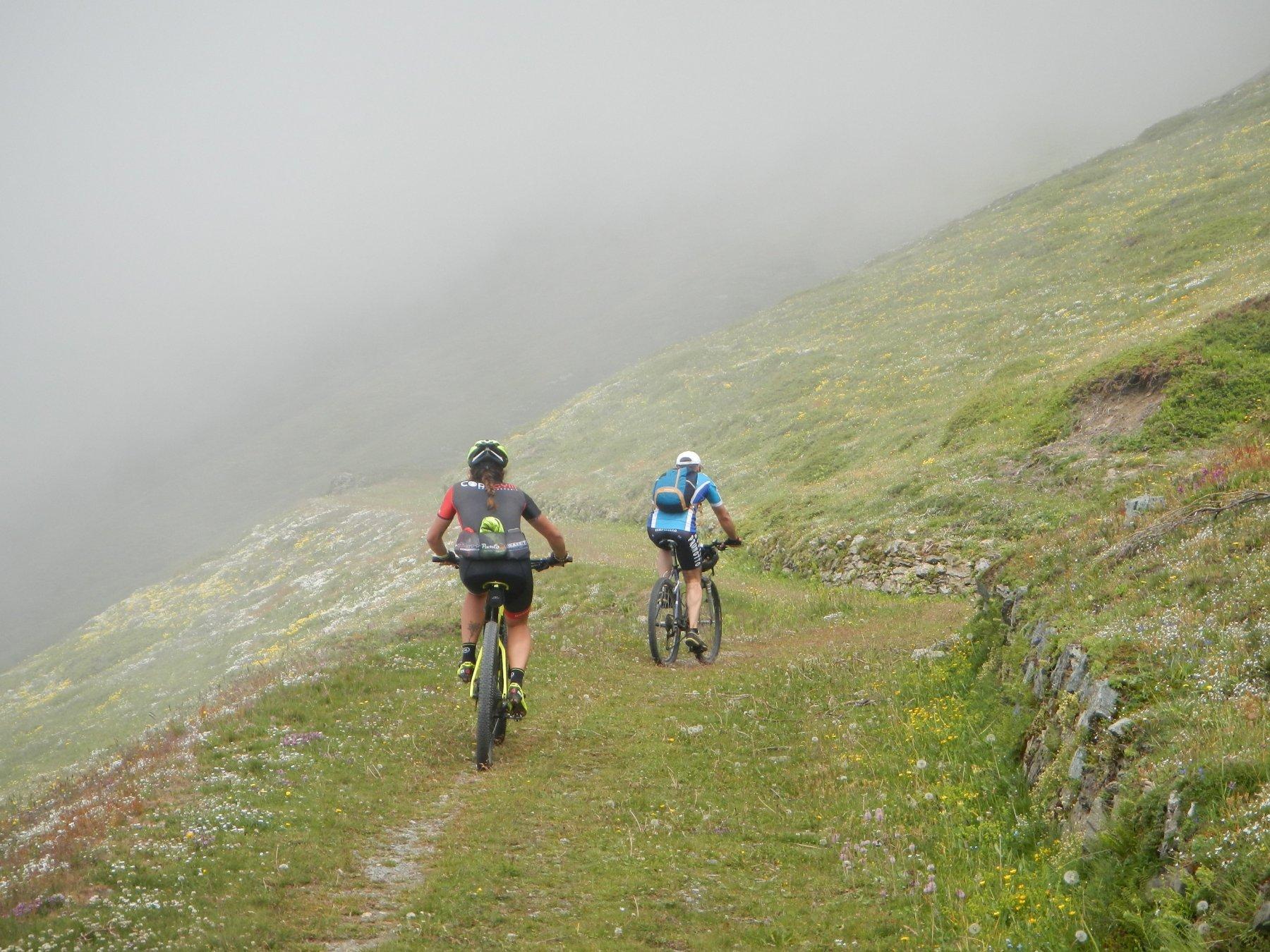 il bel sentiero di salita sul versante sud del Monte Pintas
