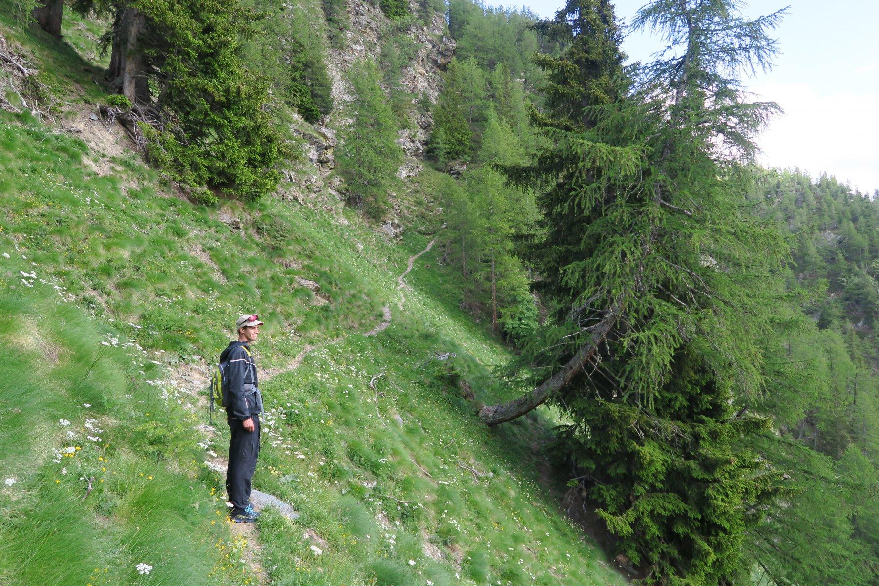 ultimo e ripido tratto di sentiero da risalire per arrivare a Plan Puitz