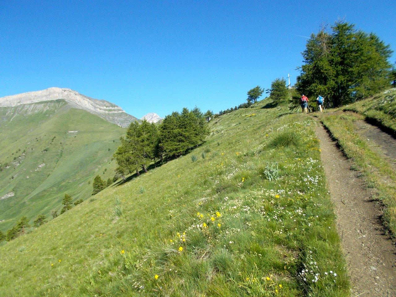 Il Monte Pietralunga ,salendo al Colle della Battagliola