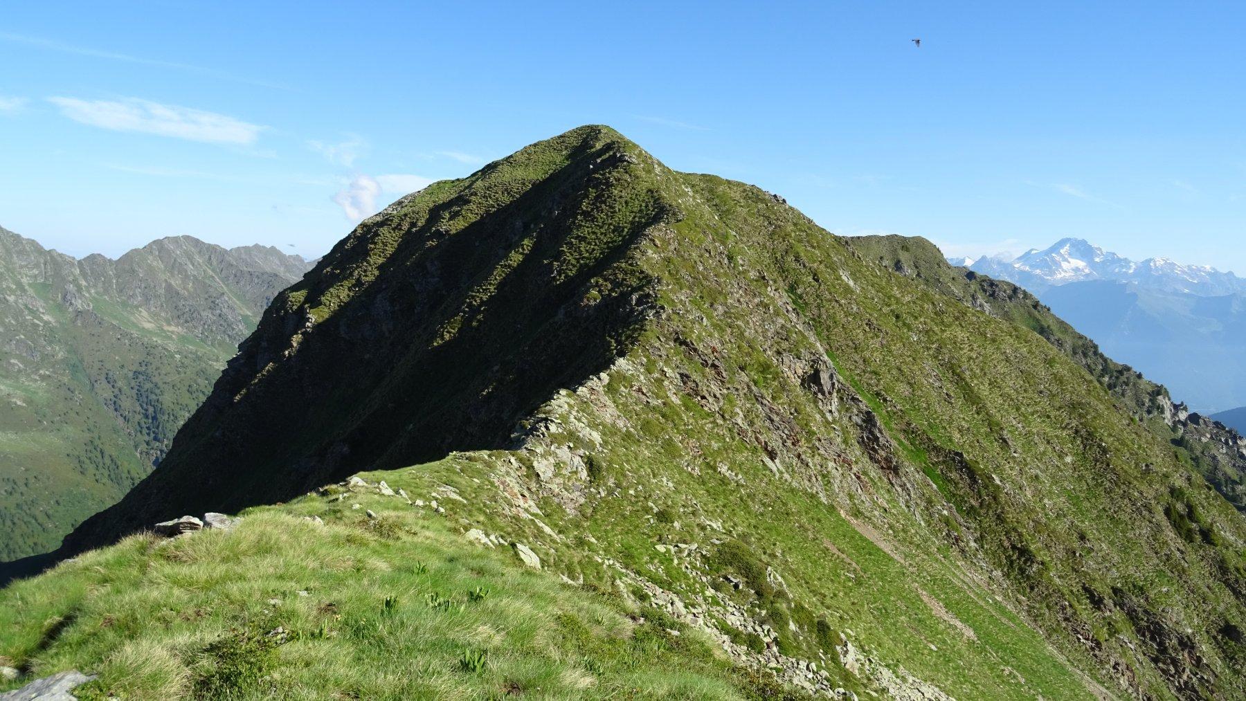 Vista sull'anticima della sponda Camoscera, la vera cima non si vede ancora.