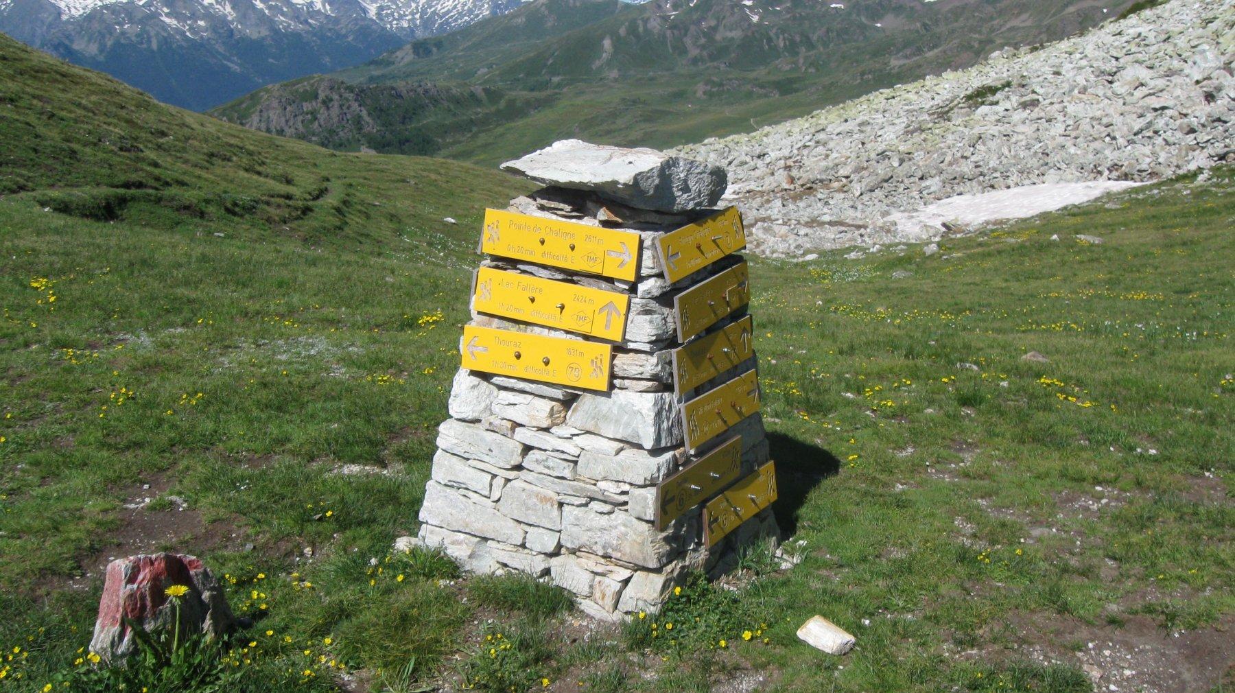 Col di Metz 2492 m.