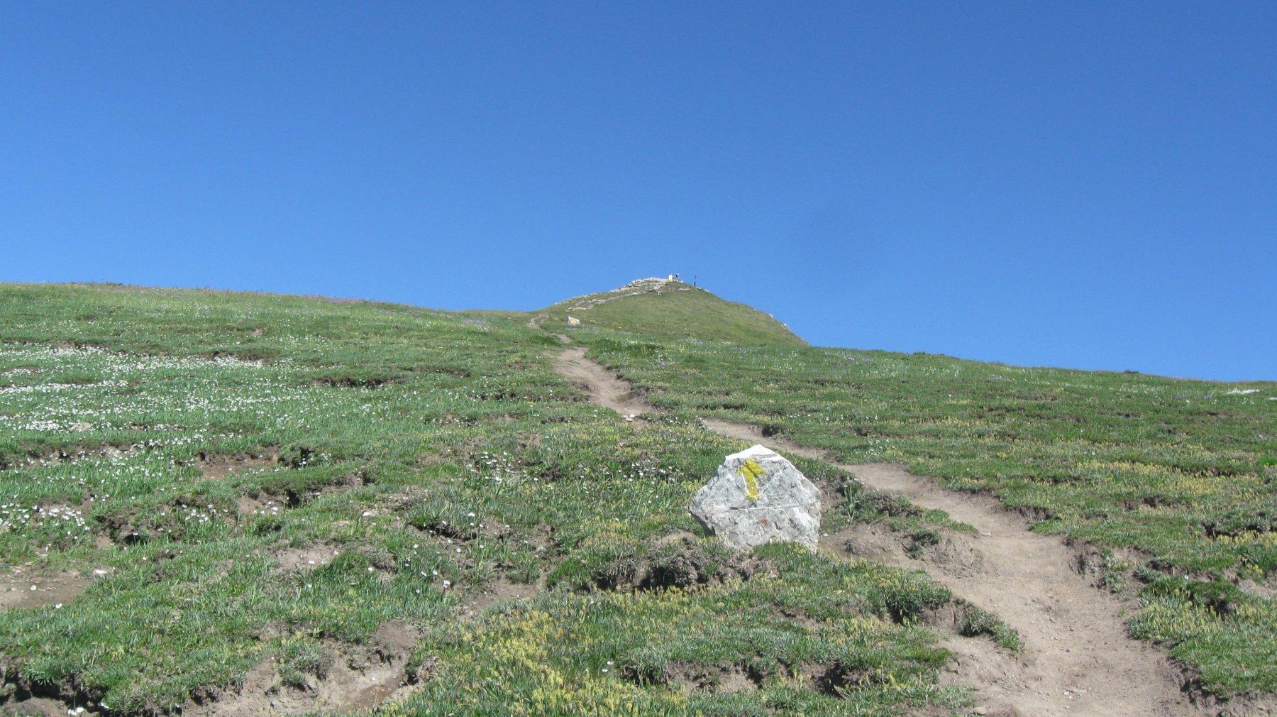 La dorsale con la Punta Chaligne
