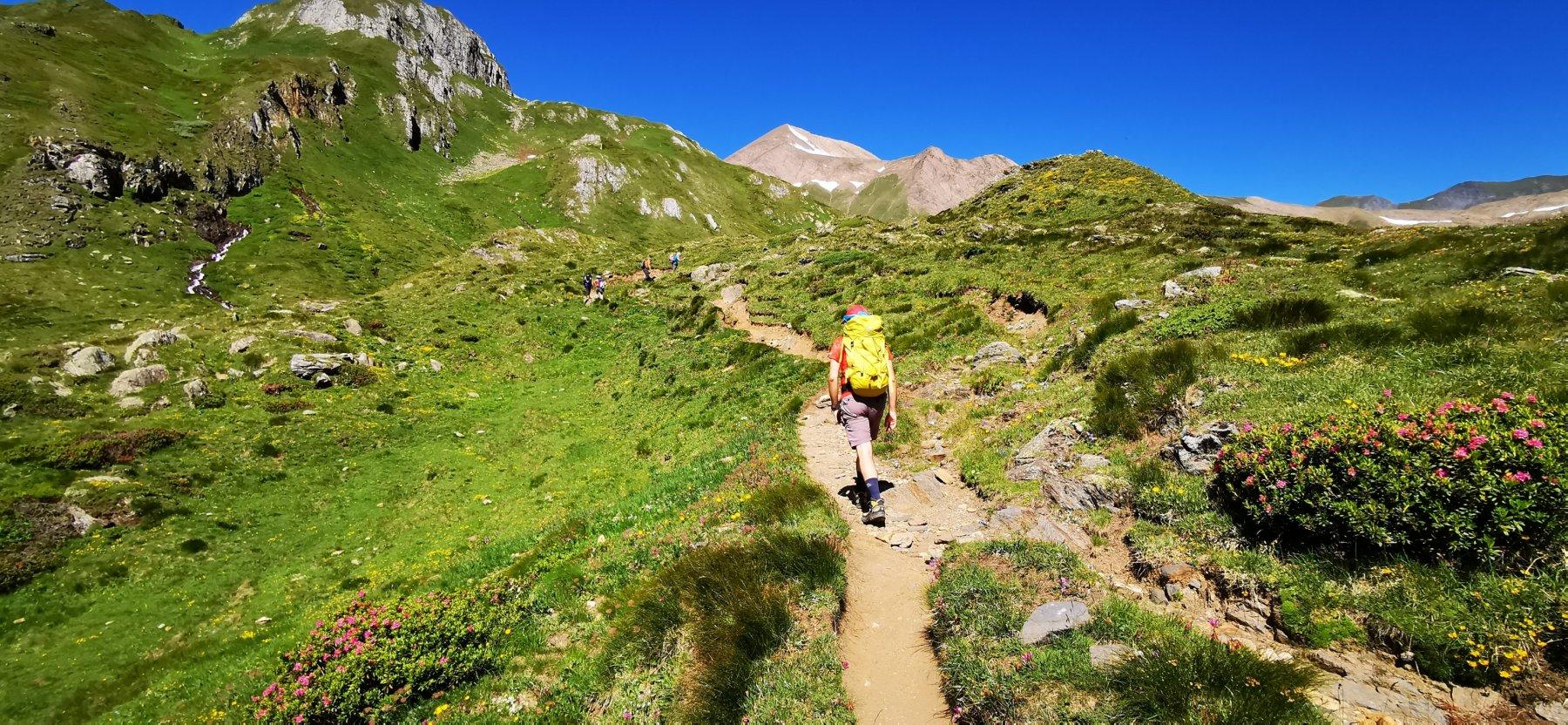 salendo verso il pianoro dell'Alpe Bettelmatt