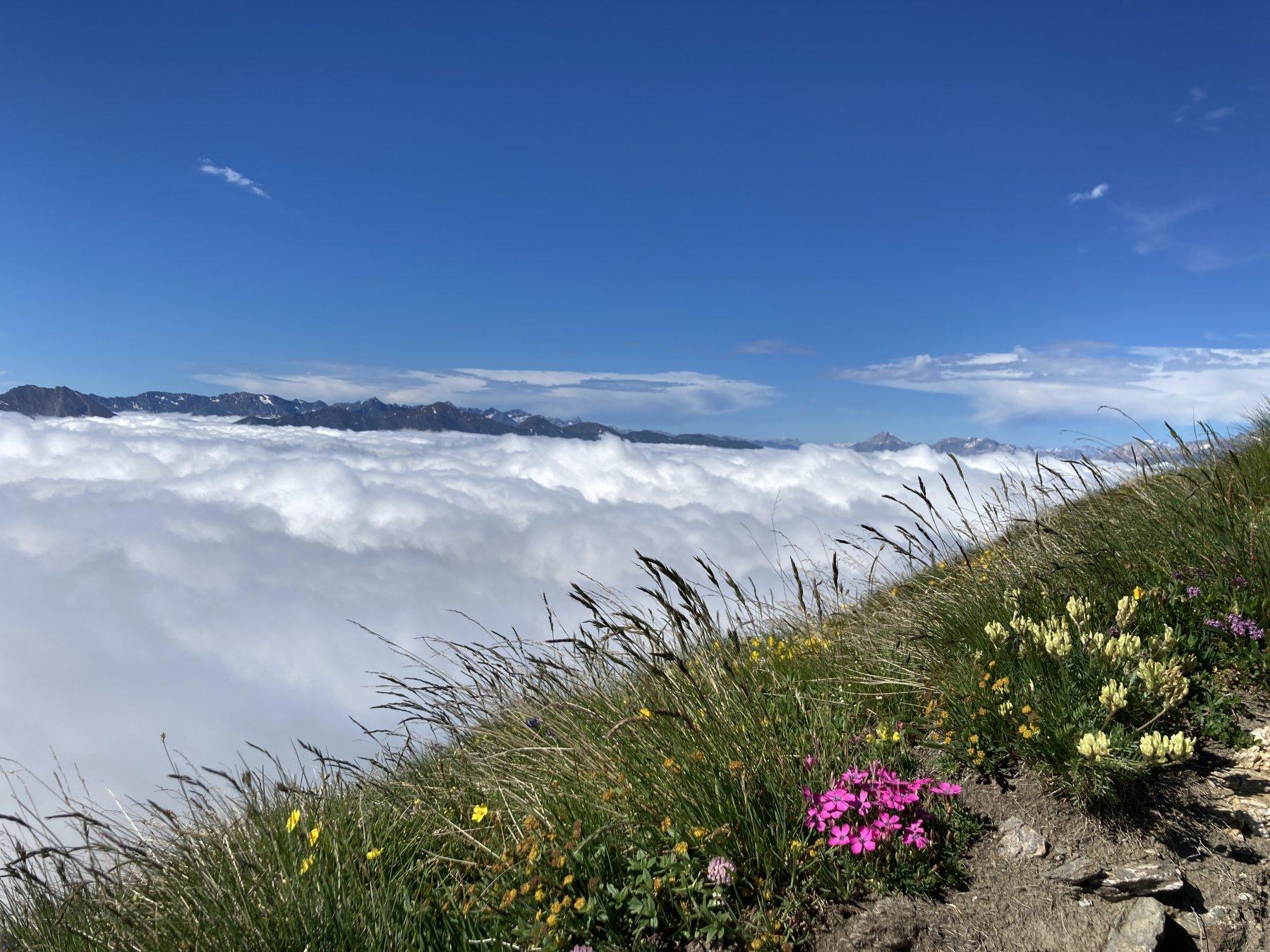 sopra le nuvole, parte iniziale