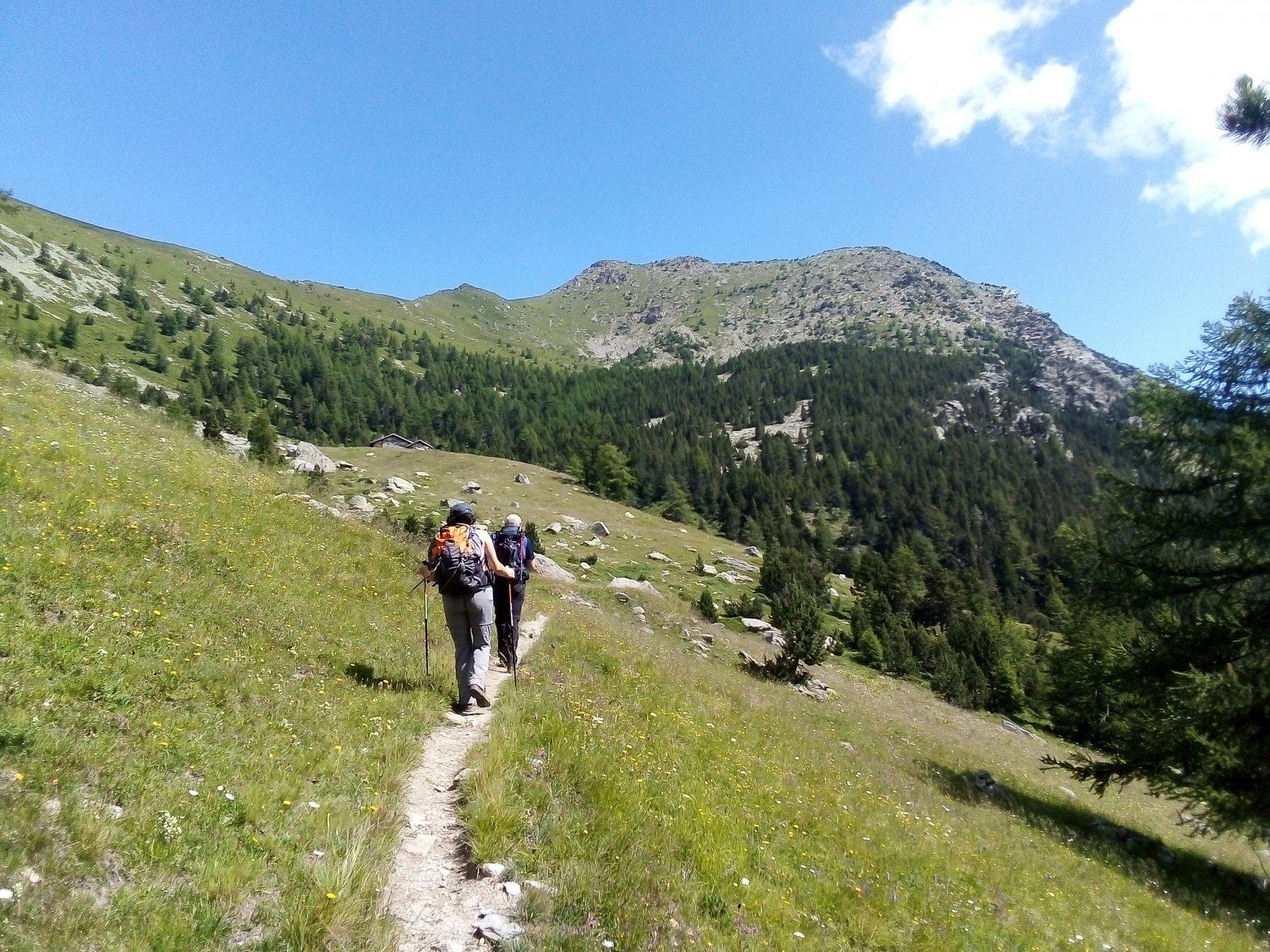 In centro la cima vista nel tratto fra i due alpi, appena fuori dal bosco.