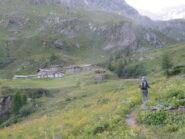 Arrivo all'Alp. du Mont Forciaz