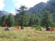 partenza del sentiero con l'ometto di pietre e i due larici isolati