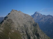 due belle cime dal m. Camoscere