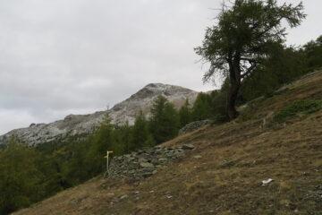 arrivando all'alpe di Viou