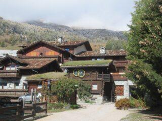 Caratteristiche case con tetti con l'erba