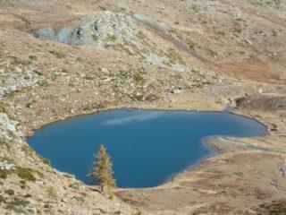 lago Raty e larice dorato