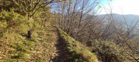 il primo tratto del sentiero che da Creto porta verso la Gola di Sisa