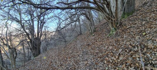 tratto di sentiero oltre la Gola di Sisa