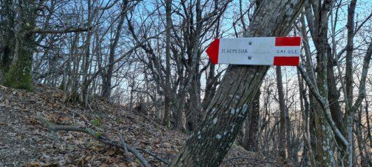 cartello indicatore al bivio dove va lasciato il sentiero dell'AVML per salire in cima all'Alpesisa