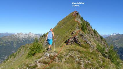 Dal P.so di Val Vegia saliamo l'estetica cresta che porta al P.zo dell'Orto.