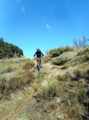 sentiero delle Ginestre 3