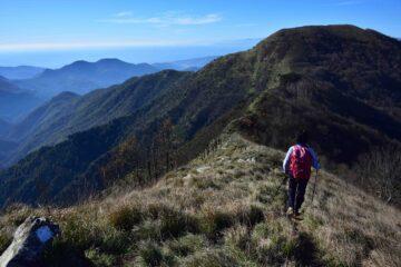 Cresta tra monte Lago e monte Alpesisa