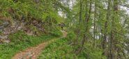 un tratto del sentiero che dalla Gola dell'Incisa passa sul versante francese verso la Fonte Dragurina