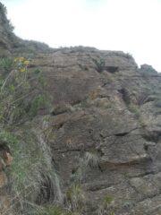 placca di Ubaldo