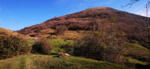 Monte Alpesisa osservato dall'ampia spianata erbosa della Gola di Sisa