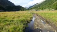 oltrepassando il pianoro dell'Alpe Misaun