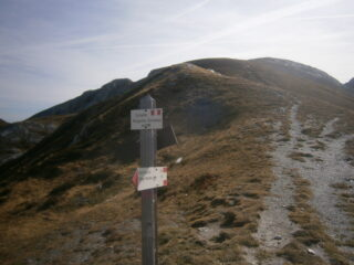 verso la cima Brignola