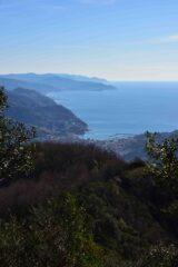 Veduta verso Levante salendo al monte Caravaggio