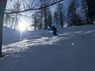 Nel bosco bella neve