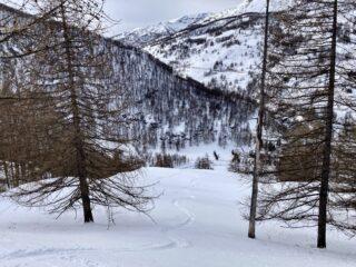 Il bel tratto centrale nel bosco