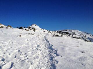Dorsale superiore monte Fontanabuona