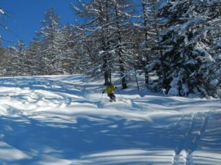 discesa veloce su bella neve