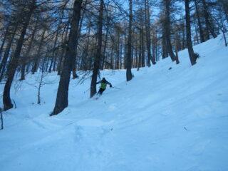 bella neve nel bosco