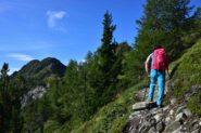 Sul sentiero della cresta Nord della Becca d'Aver