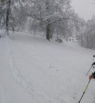 Primo taglio poco prima di case Cler, Poco prima del divieto di transito in caso di neve