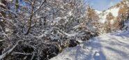 ambientino invernale lungo la stradina militare seguita in salita