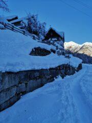 Alpe Balmo