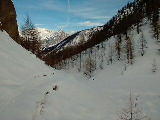 Parte alta della sterrata (1800m circa); sguardo verso valle