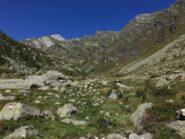 Prima dell'attraversamento del Chiusella a quota 1640 ca, dopo l'Alpe Pra' di Vico. Da queste parti il bivio per la valletta dei Corni, pare, come tramandatomi (io non ho visto alcun segno)