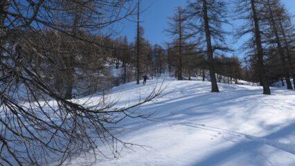 neve non molto bella