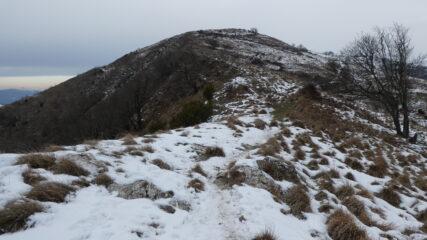 ultimo tratto di crinale per raggiungere il Monte Alpe