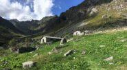 Alpe La Nuova, fotografata al rientro
