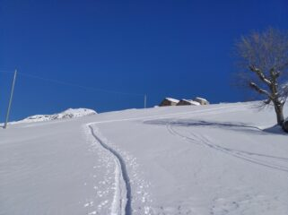 Traccia all'alpe Buri