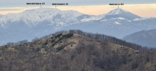 panorami osservati dal Monte Carossino...01