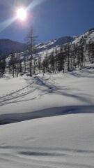 Il bel pendio canale che sale all'Alpe Vallonetto
